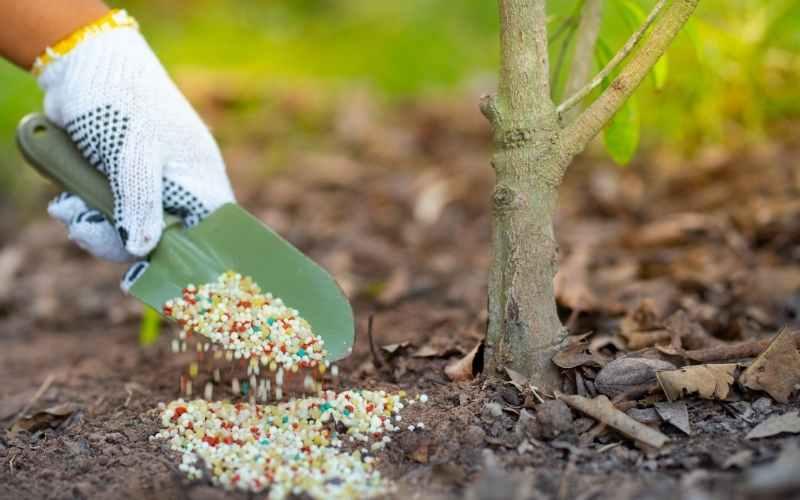 10-10-10-Fertilizer