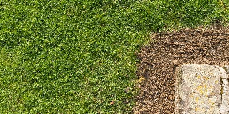 soil-damage
